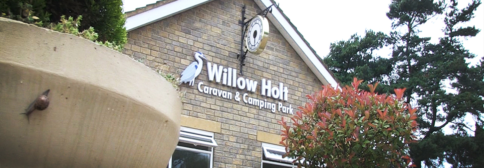 Willow-Holt-building